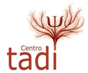 servicios_tadi